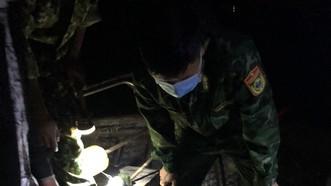 Cá thể rùa biển được bộ đội biên phòng đồn Roòn giải cứu trong đêm
