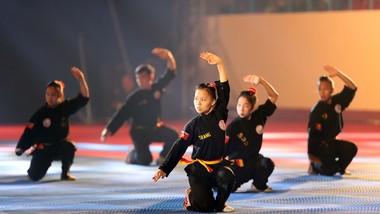 Các võ sĩ chưa thể tham dự giải võ cổ truyền toàn quốc năm nay.