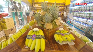 Tiêu dùng thông minh với sản phẩm Organic và Gis