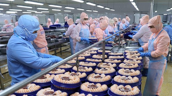 Hiệp hội Chế biến và Xuất khẩu thủy sản Việt Nam (VASEP) dự báo, xuất khẩu thủy sản trong Quý II/2021 sẽ tiếp đà tăng trưởng 10%. Ảnh minh họa.