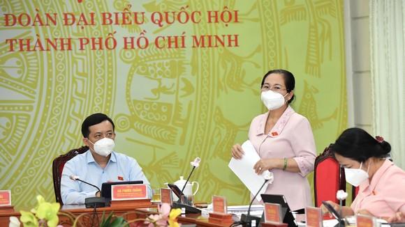 ĐB Nguyễn Thị Lệ phát biểu thảo luận tổ. Ảnh: VIỆT DŨNG