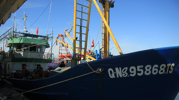 Quảng Ngãi: Cảng cá mở cửa giải quyết toàn bộ hải sản cho tàu đi đánh bắt trở về