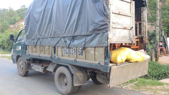 Quảng Ngãi: Phát hiện 6 xác cá thể linh trưởng trong xe tải
