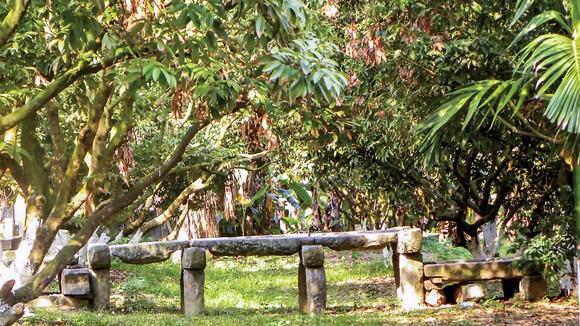 Trục đá và cối đá biến bức tường sân chùa trở lên độc đáo.