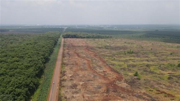 Vùng dự án sân bay Long Thành. (Ảnh: Công Phong/TTXVN)