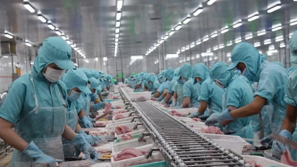 Quy trình sản xuất tại một cơ sở chế biến thủy sản của tỉnh Đồng Tháp. (Ảnh: Chương Đài/TTXVN)