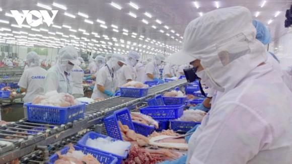 Các doanh nghiệp vùng ĐBSCL đã chú trọng đến thị trường nội địa, đồng thời phát triển thêm những thị trường xuất khẩu dựa trên những lợi thế.