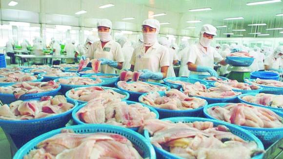 Nhiều doanh nghiệp sản xuất lương thực, thực phẩm tăng công suất, tăng nguồn cung ứng vào thị trường. (Chế biến thực phẩm tại Công ty CP Hải sản Sài Gòn)
