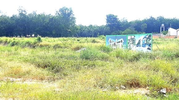 """Một dự án khu dân cư ở thị xã Tân Uyên (tỉnh Bình Dương) để hoang hóa lâu ngày do vướng thủ tục cấp """"sổ đỏ"""""""
