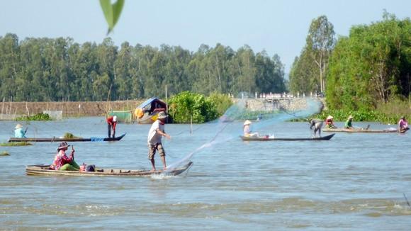 ĐBSCL cần mở rộng không gian chứa nước ngọt trong mùa mưa