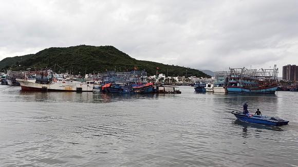 Tàu thuyền vào cảng Hòn Rớ, TP Nha Trang neo đậu để tránh bão. Ảnh: QUỲNH ANH