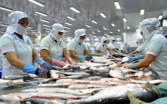 按歐盟的新規定,從本月21日起,進口要求不再依照動物源成份的百分比,而根據動物健康或從使用這些綜合產品對社群體康安全隱患基礎上批准。(示意圖源:垂楊)