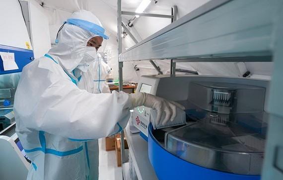 工作人員在進行核酸提取作業。(圖源:新華社)