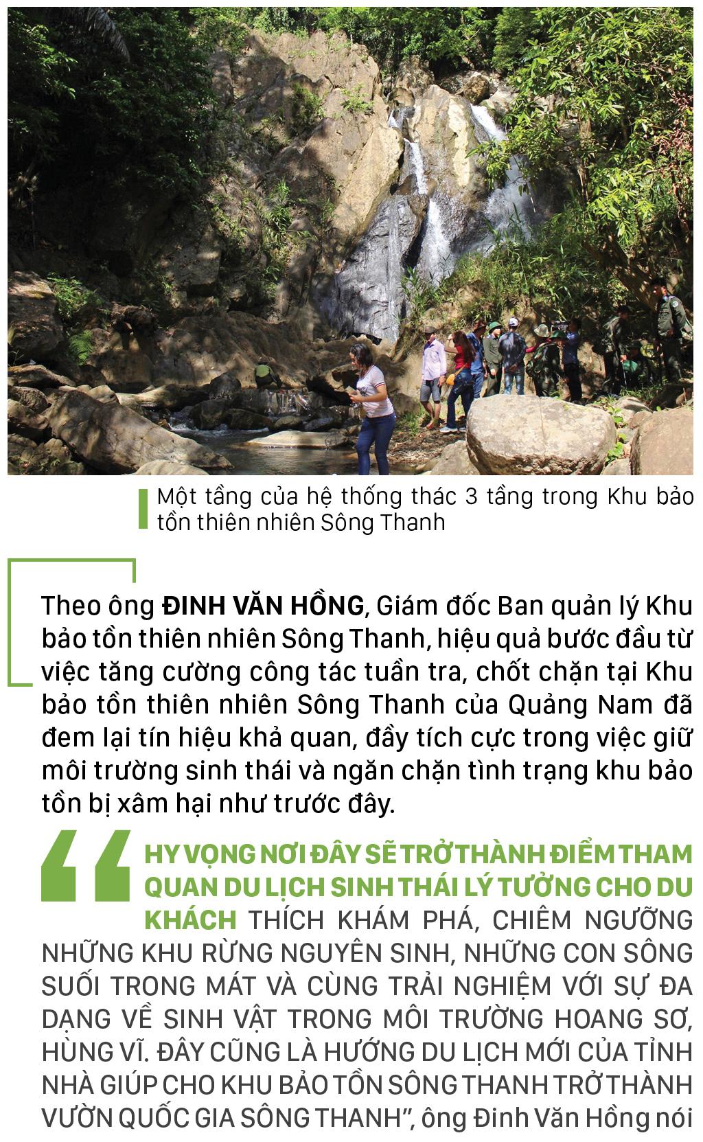 Nỗ lực giữ rừng Sông Thanh ảnh 10