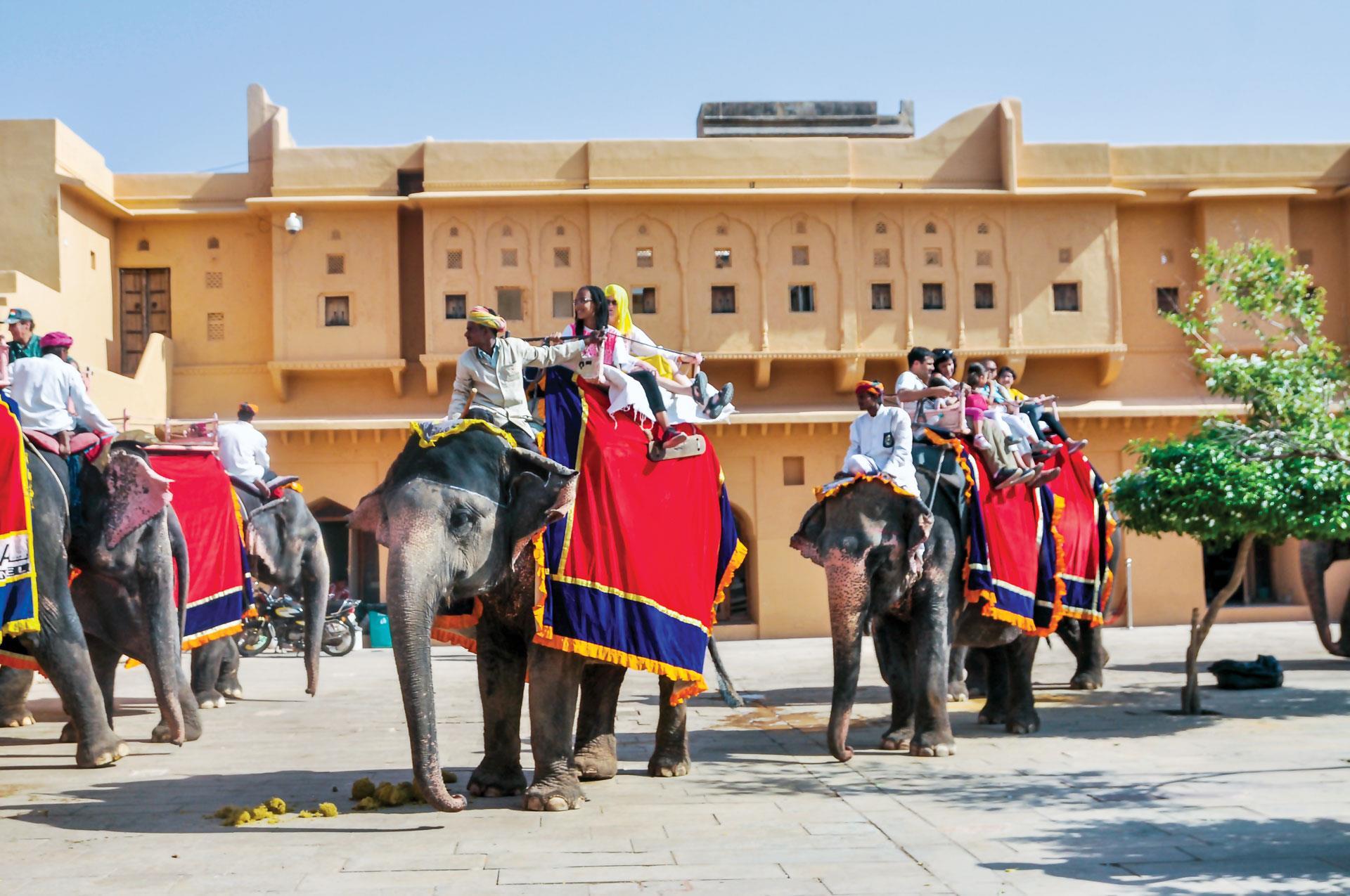 Jaipur thành phố màu hồng  ảnh 5