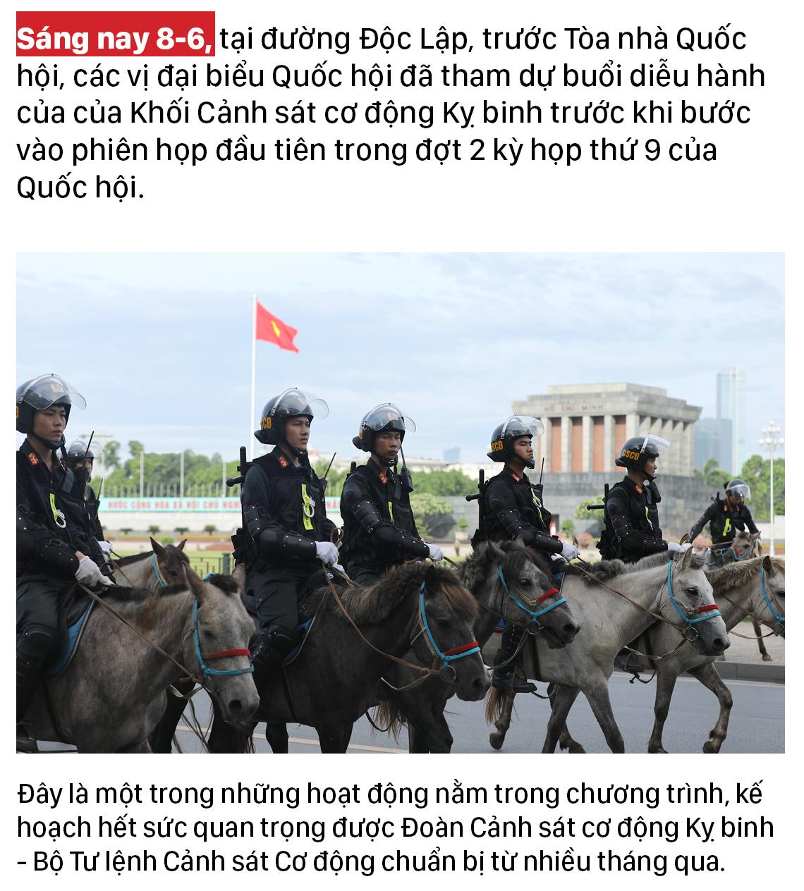 Ra mắt đoàn cảnh sát cơ động kỵ binh  ảnh 1