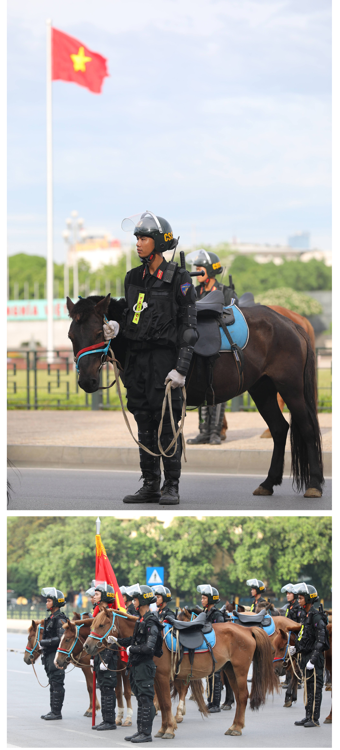Ra mắt đoàn cảnh sát cơ động kỵ binh  ảnh 6