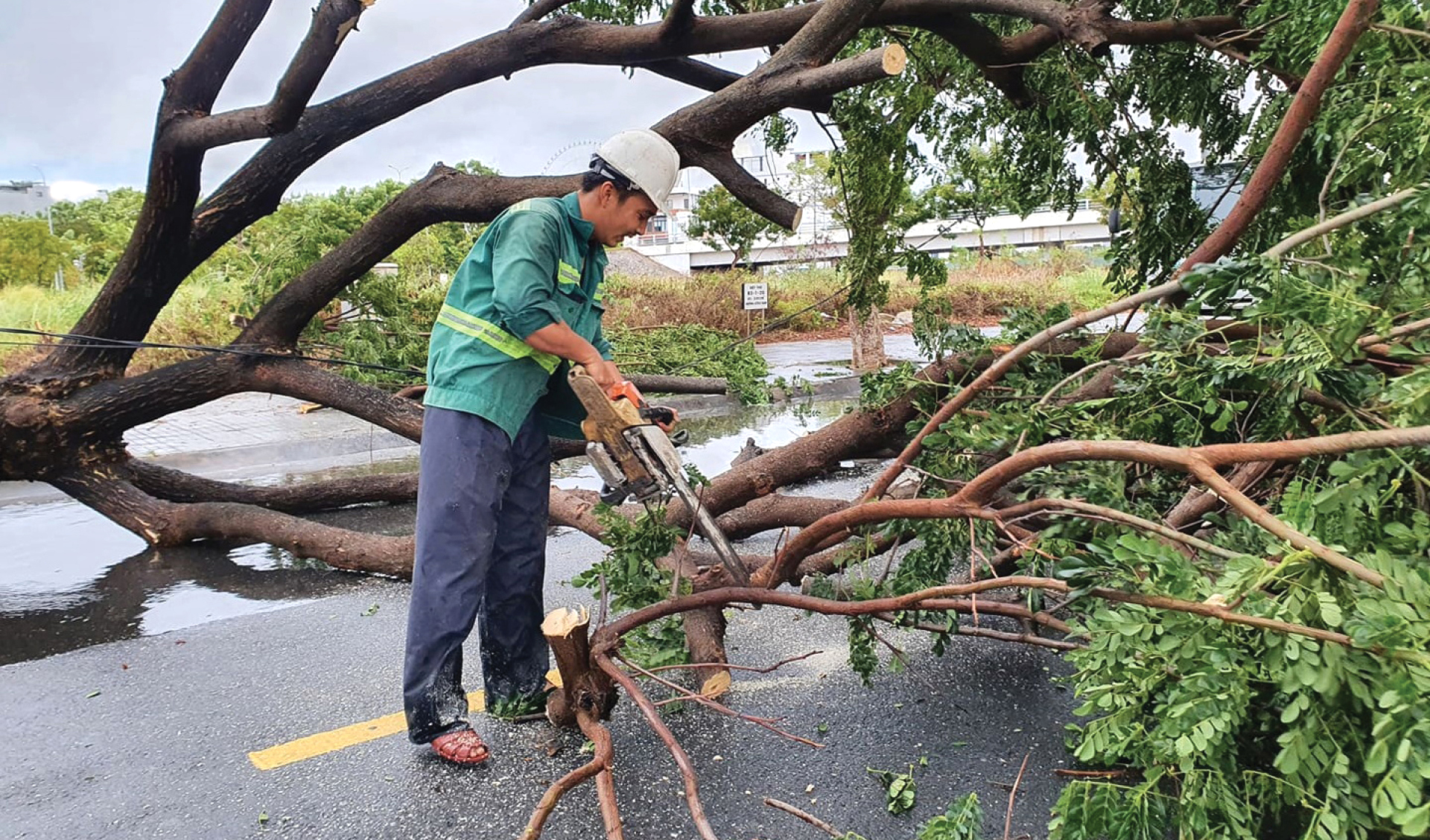 Bão số 5 đổ bộ miền Trung gây lốc xoáy, mưa lớn và ngập úng ảnh 16