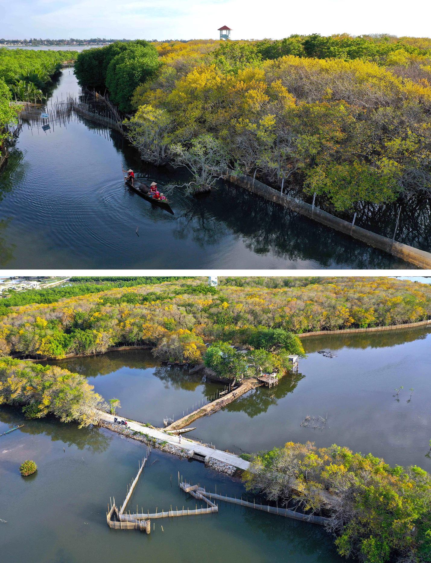 Bình yên sông nước phá Tam Giang ảnh 12