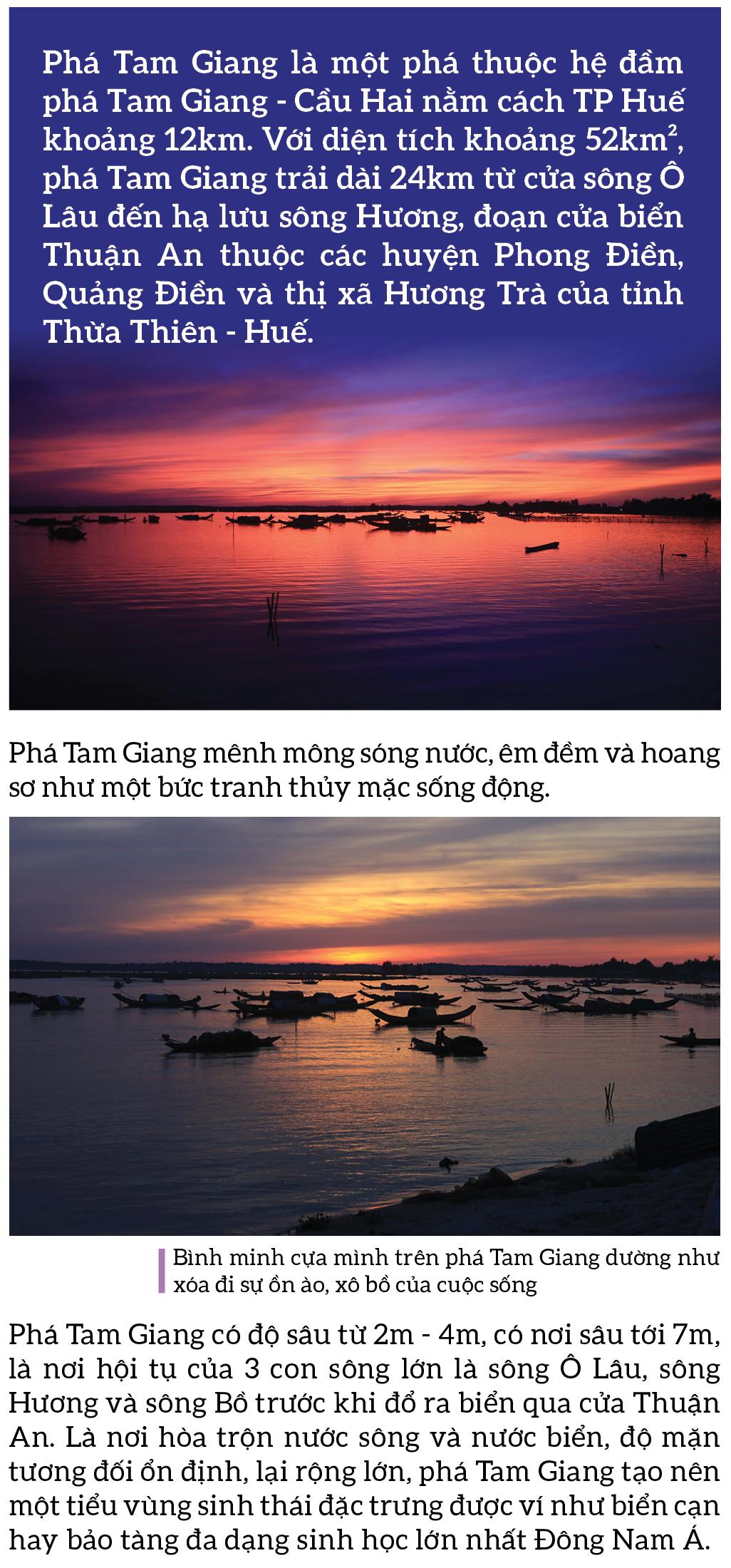 Bình yên sông nước phá Tam Giang ảnh 1