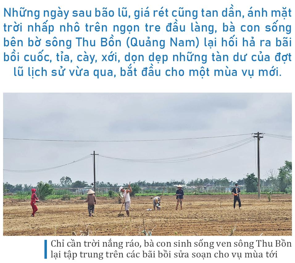 Mưu sinh trên bãi bồi ven sông Thu Bồn ảnh 1