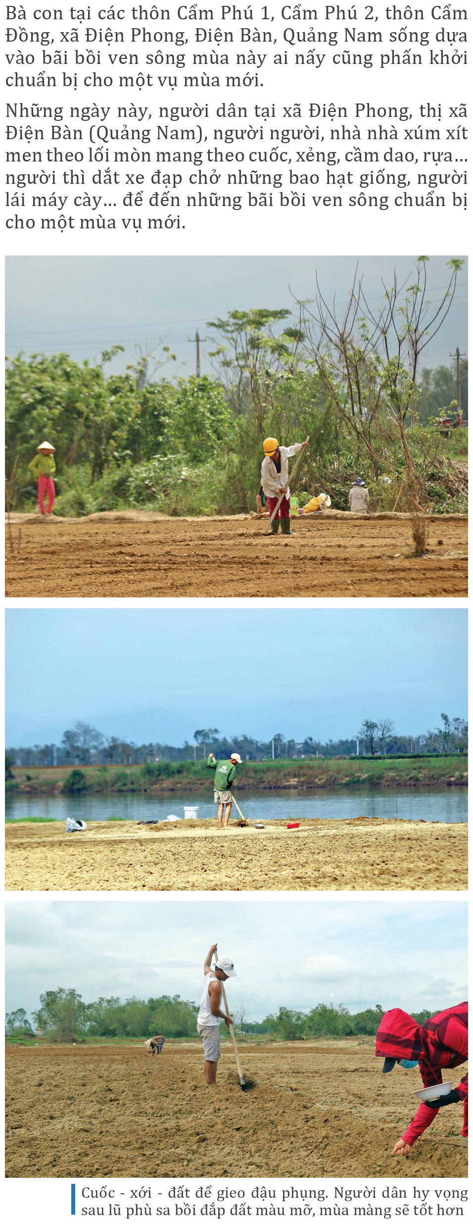Mưu sinh trên bãi bồi ven sông Thu Bồn ảnh 2