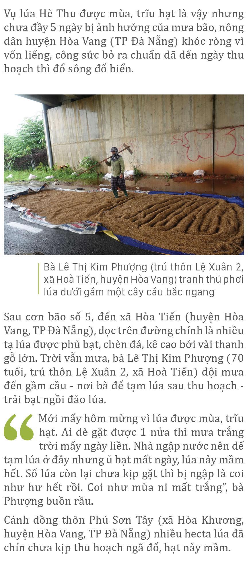 Nông dân miền Trung dầm mình cứu lúa sau mưa bão  ảnh 21