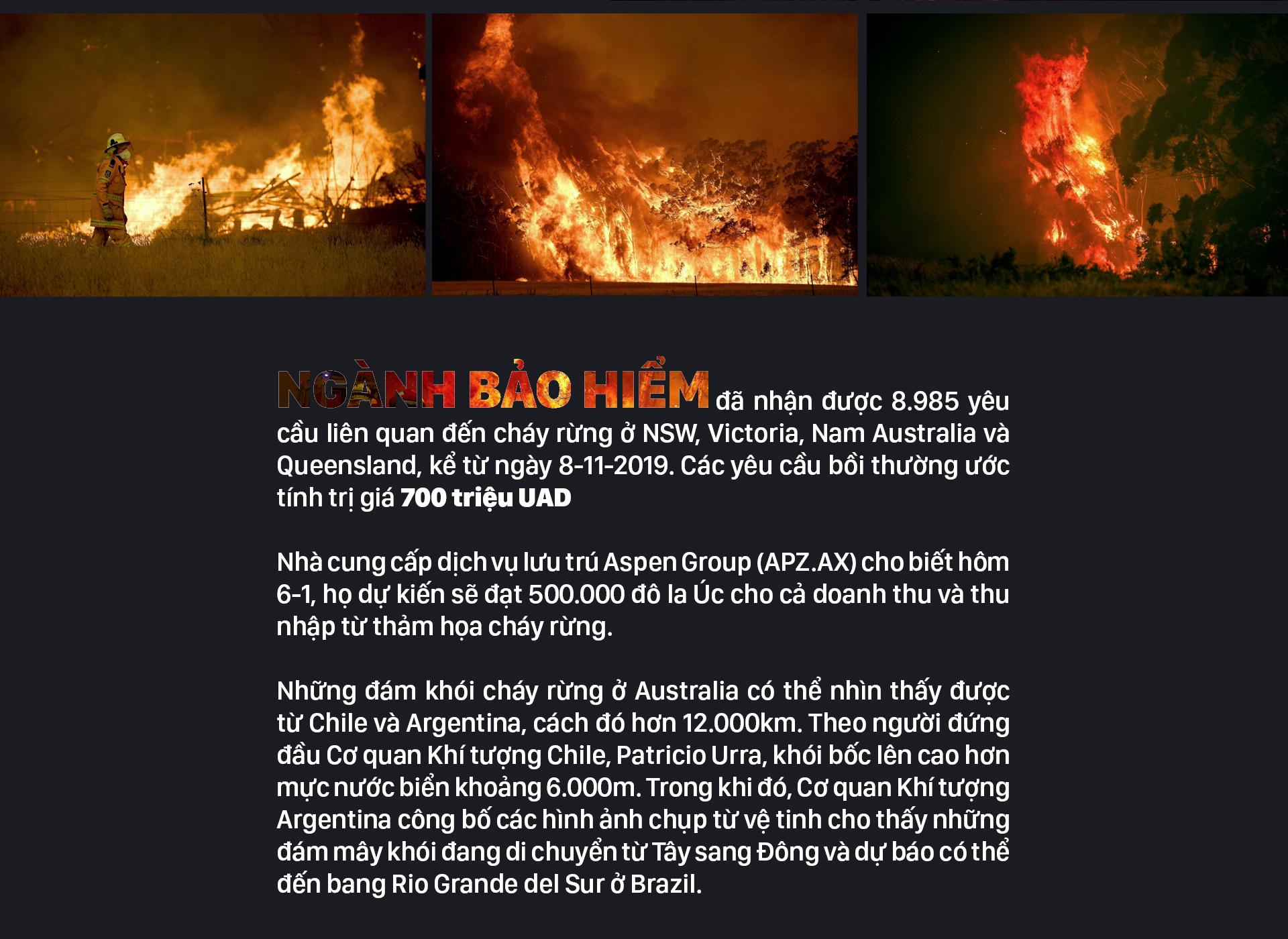 Australia 'oằn lưng' chống chọi thảm họa cháy rừng ảnh 13