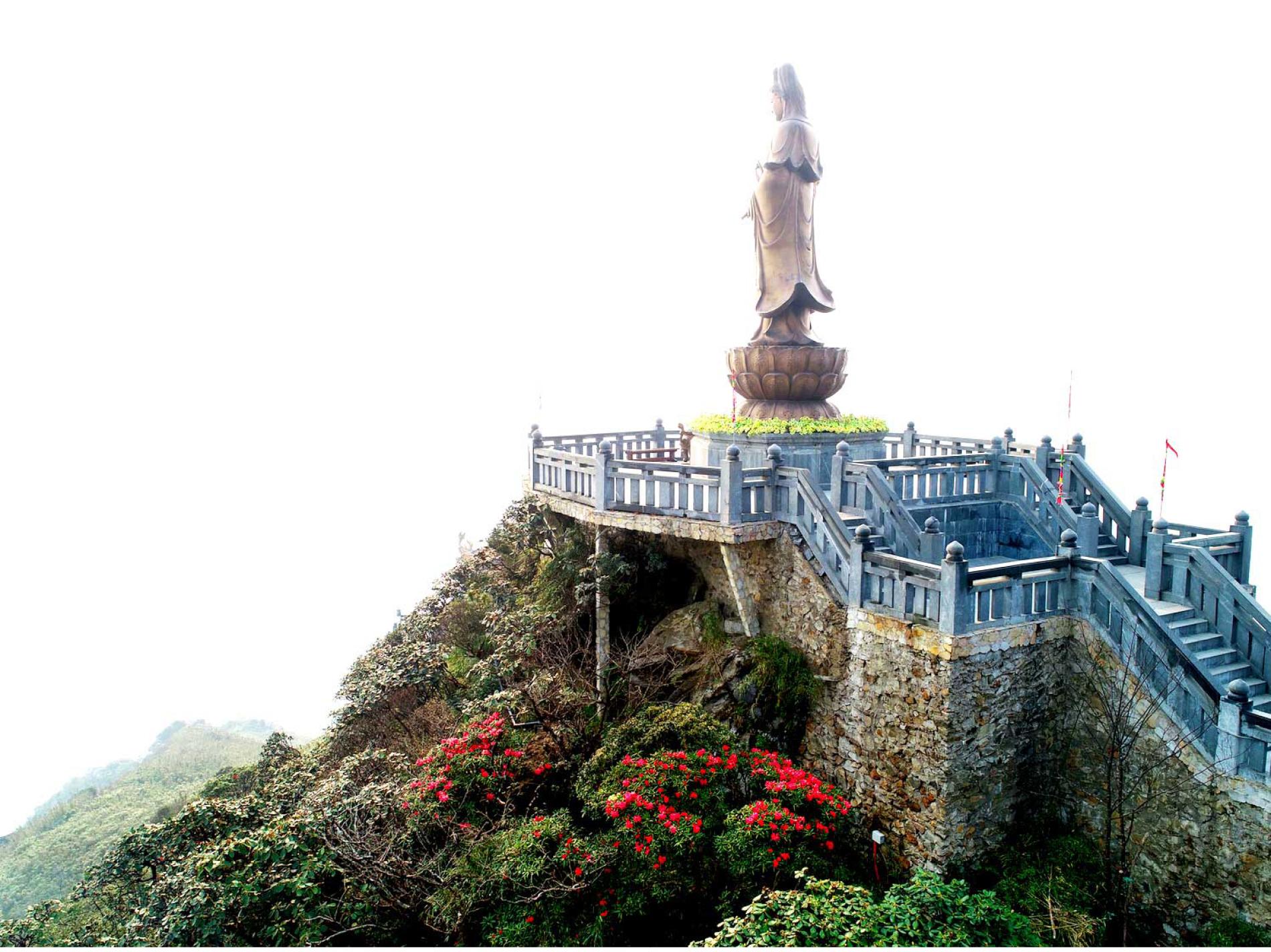 'Nữ hoàng' đỗ quyên 'bung lụa' trên đỉnh Fansipan ảnh 10