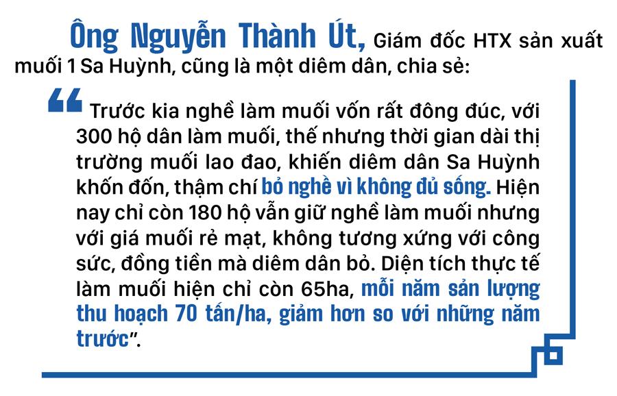 Lao đao nghề làm muối ở Sa Huỳnh, Quảng Ngãi ảnh 11