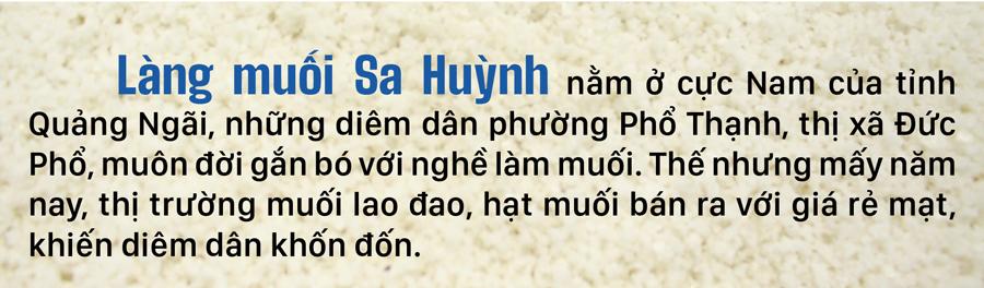 Lao đao nghề làm muối ở Sa Huỳnh, Quảng Ngãi ảnh 1