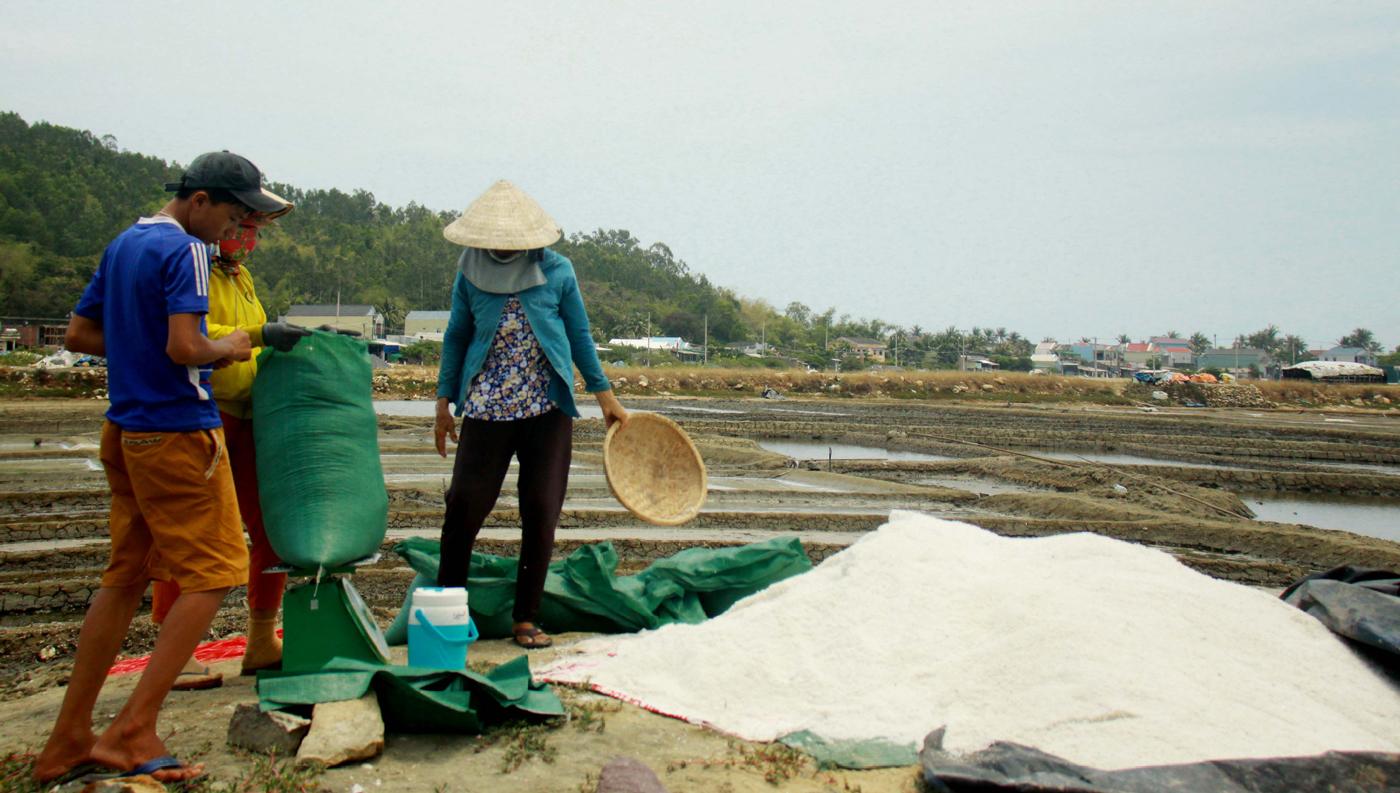 Lao đao nghề làm muối ở Sa Huỳnh, Quảng Ngãi ảnh 2