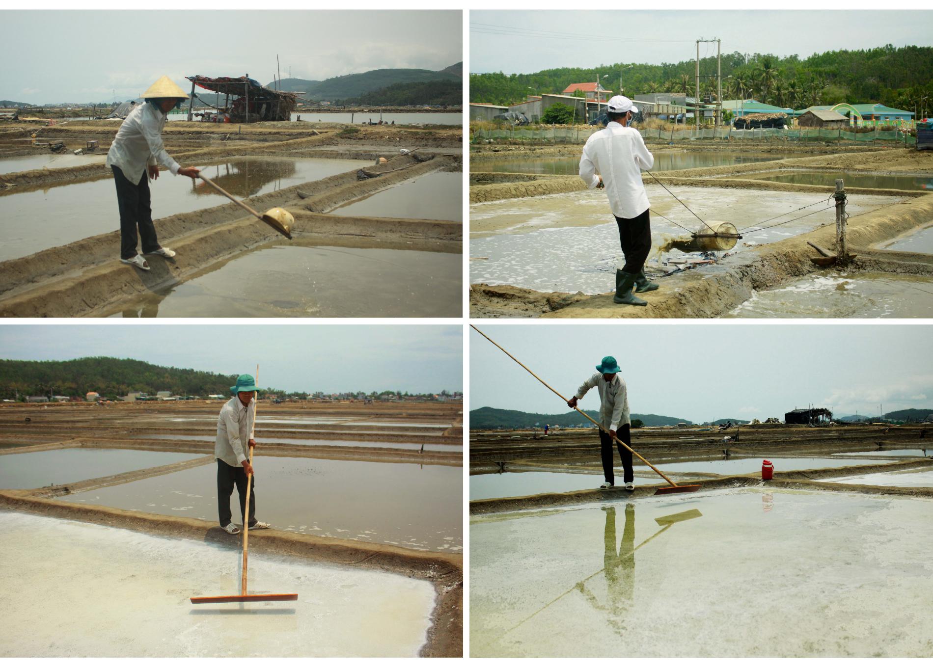 Lao đao nghề làm muối ở Sa Huỳnh, Quảng Ngãi ảnh 10