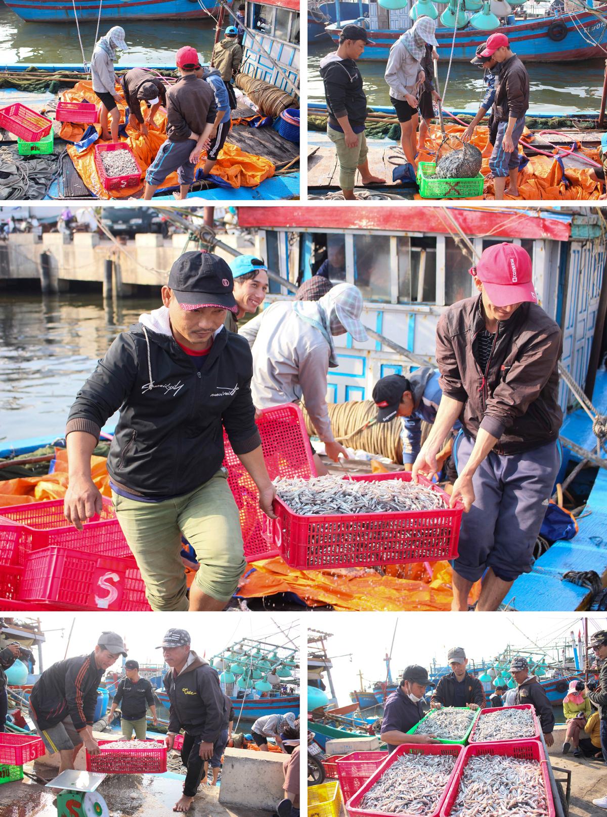 Nhọc nhằn nghề hấp cá phơi khô ảnh 11