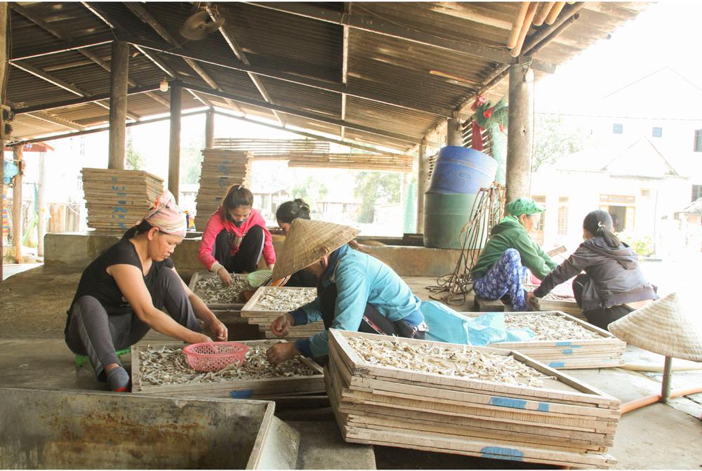 Nhọc nhằn nghề hấp cá phơi khô ảnh 13