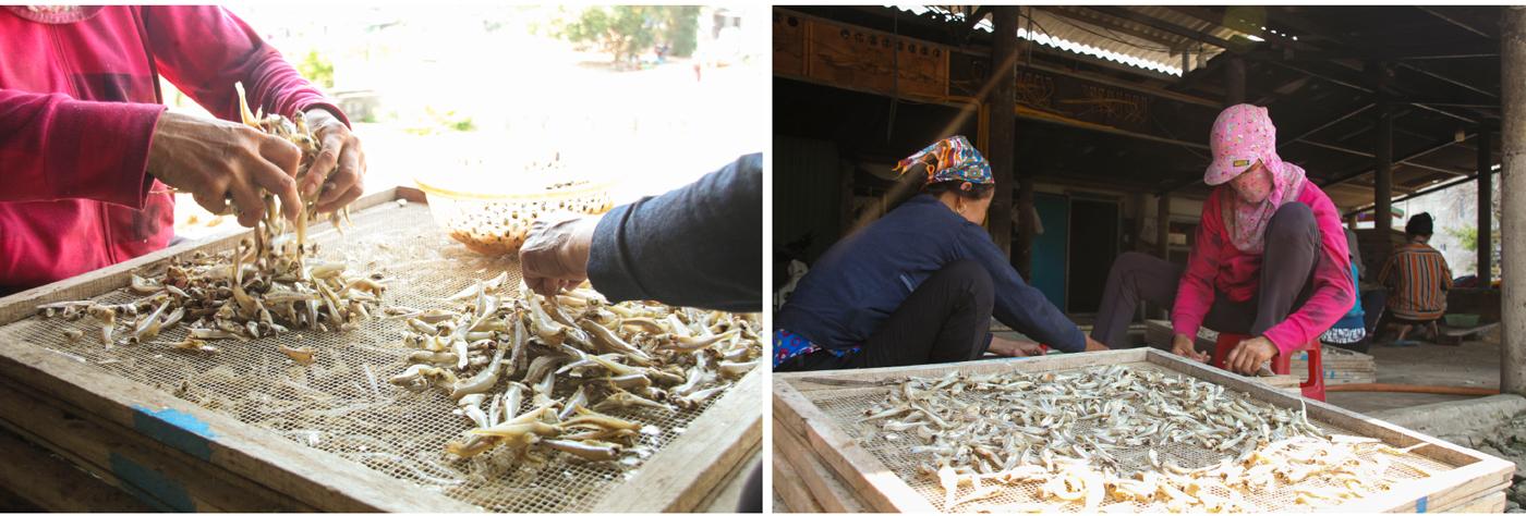 Nhọc nhằn nghề hấp cá phơi khô ảnh 15