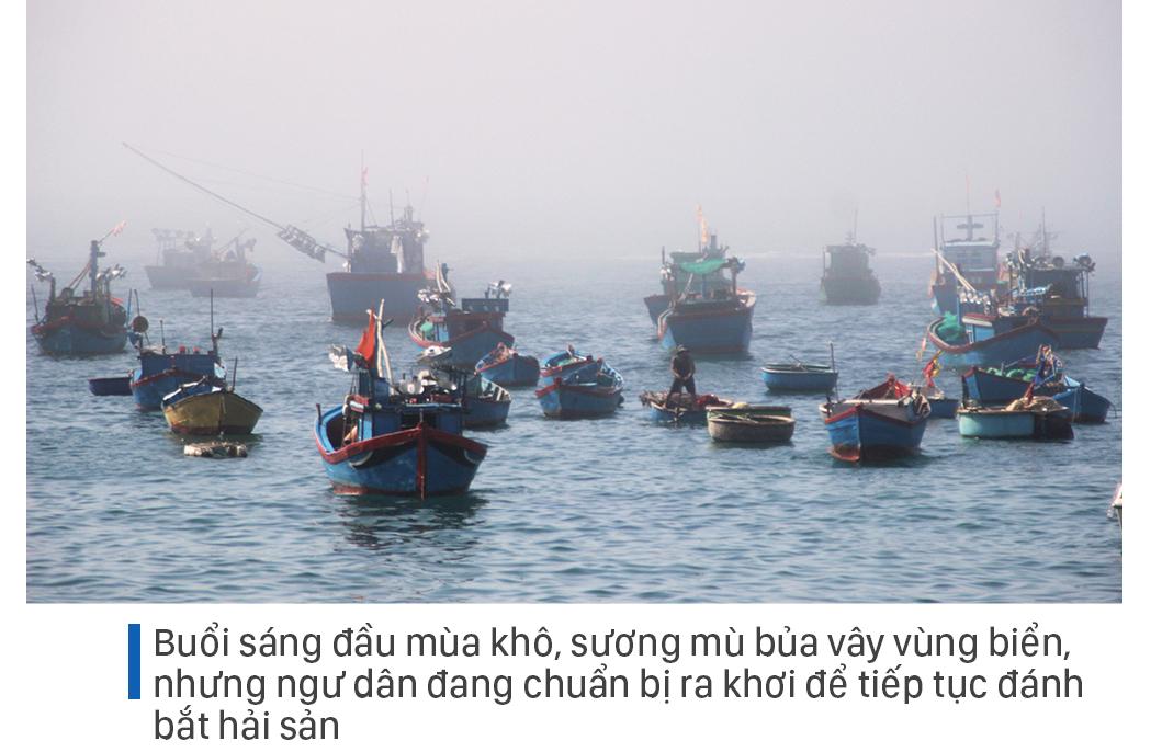 Săn tôm hùm biển kiếm bạc triệu mỗi ngày ảnh 15