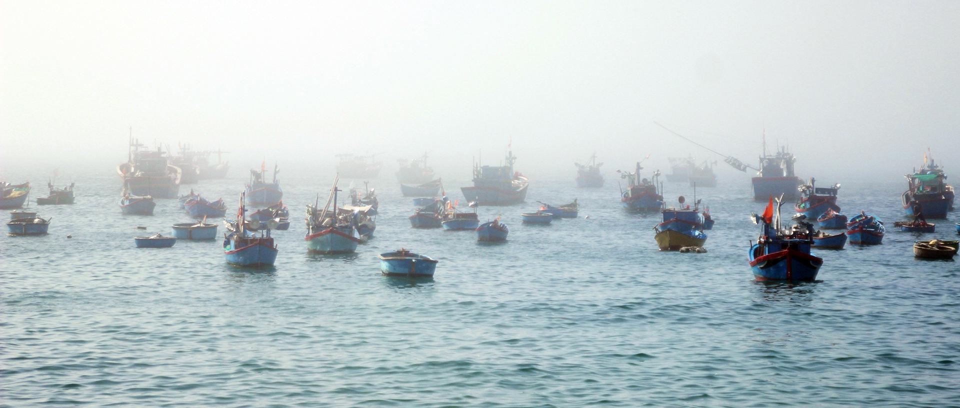 Săn tôm hùm biển kiếm bạc triệu mỗi ngày ảnh 2