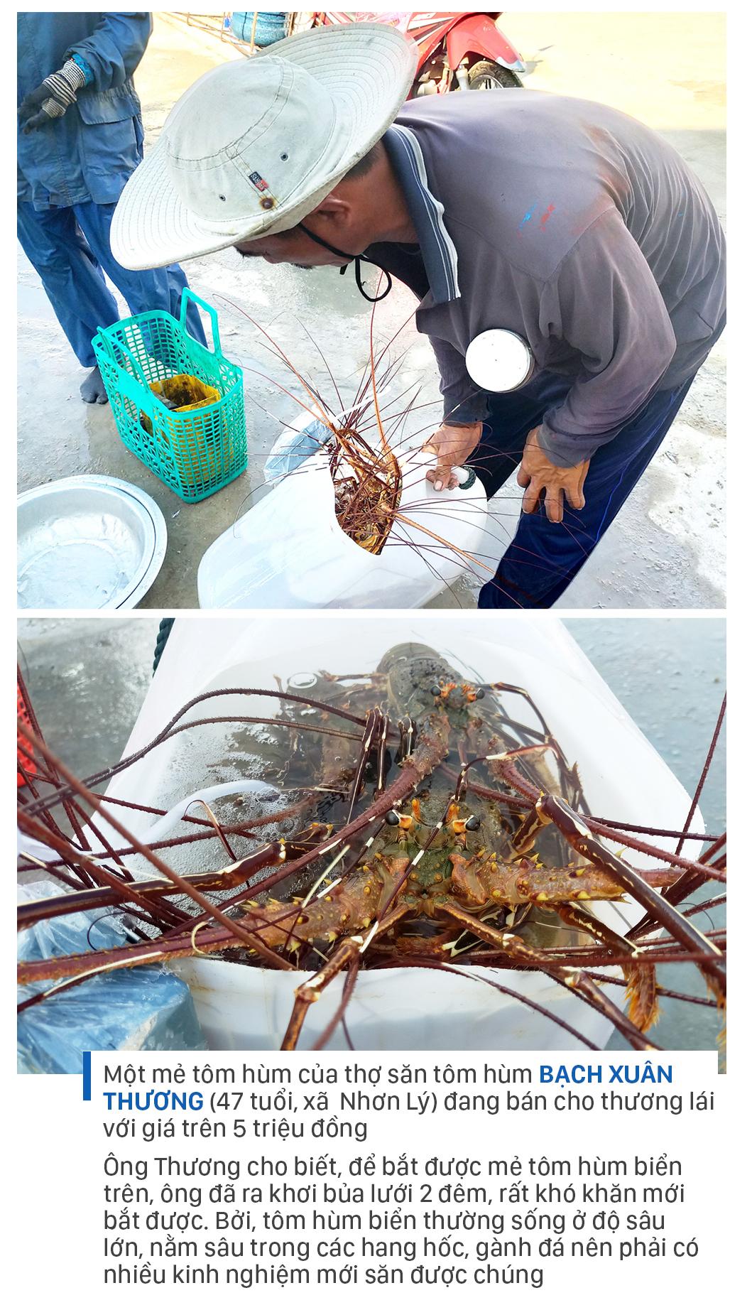 Săn tôm hùm biển kiếm bạc triệu mỗi ngày ảnh 11