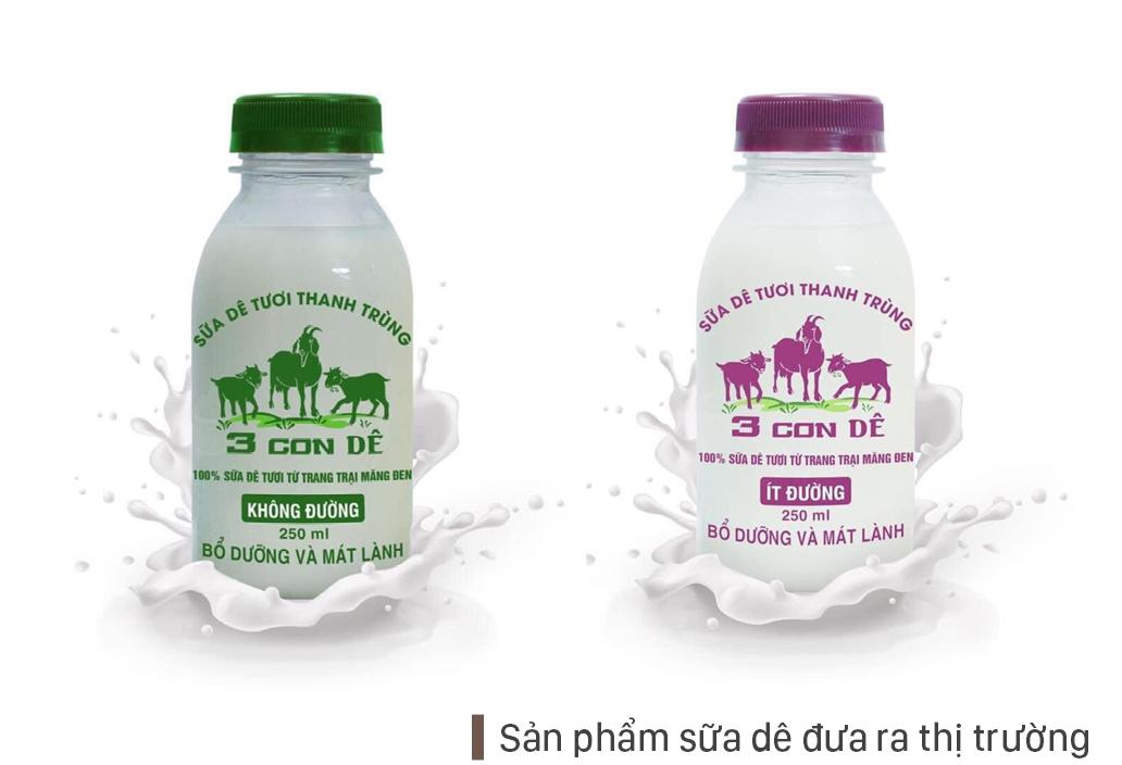 Trang trại  8.000 con dê sữa tại Măng Đen ảnh 15