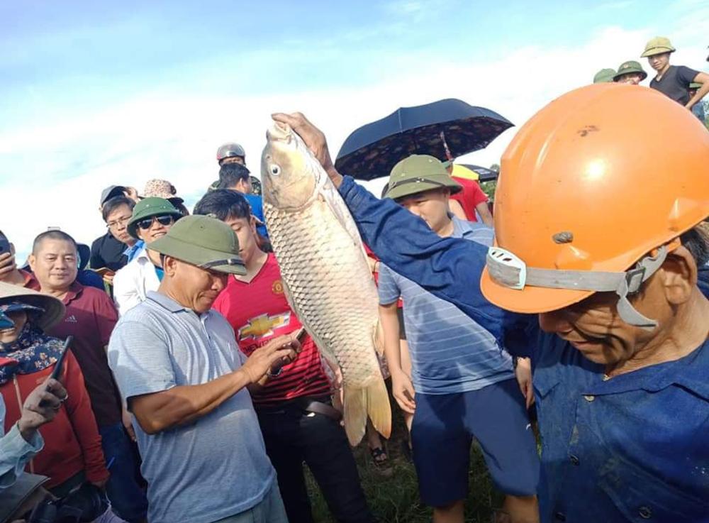 Độc đáo lễ hội đánh cá Đồng Hoa ảnh 19