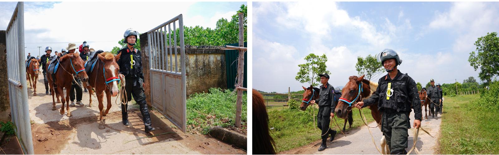 Cảnh sát cơ động Kỵ binh huấn luyện ngựa nghiệp vụ ảnh 12