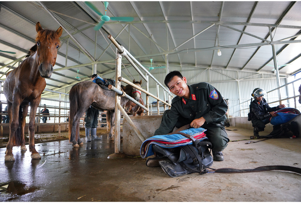 Cảnh sát cơ động Kỵ binh huấn luyện ngựa nghiệp vụ ảnh 20
