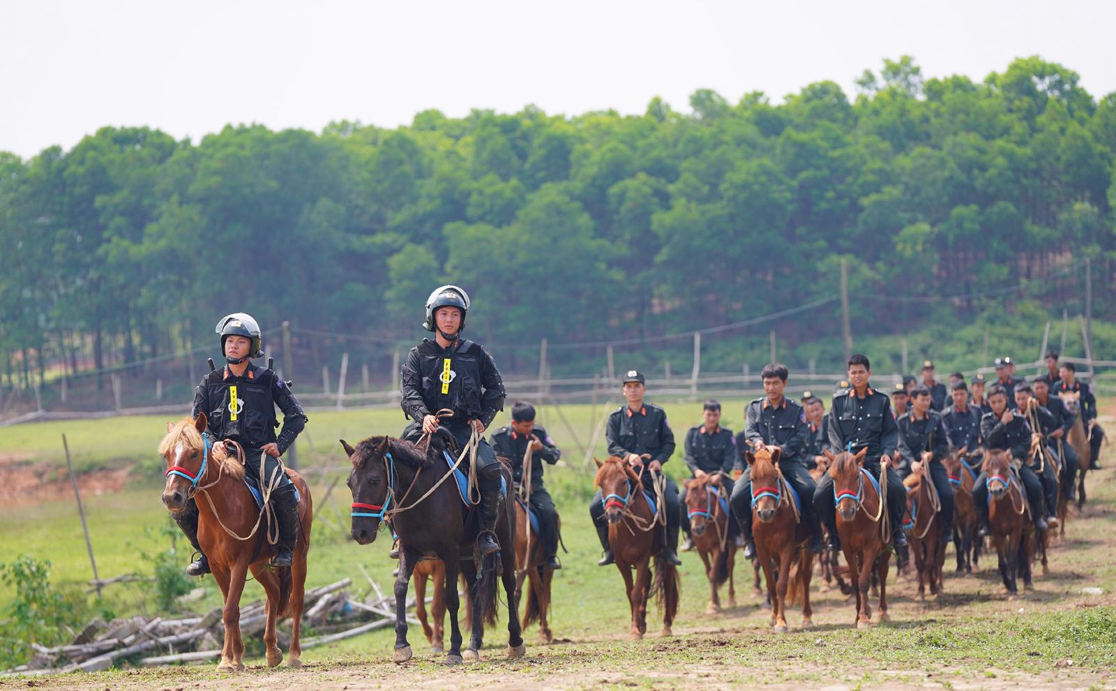 Cảnh sát cơ động Kỵ binh huấn luyện ngựa nghiệp vụ ảnh 3