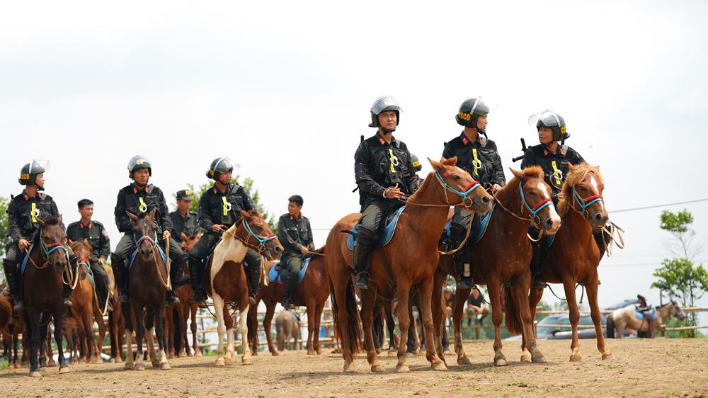 Cảnh sát cơ động Kỵ binh huấn luyện ngựa nghiệp vụ ảnh 8