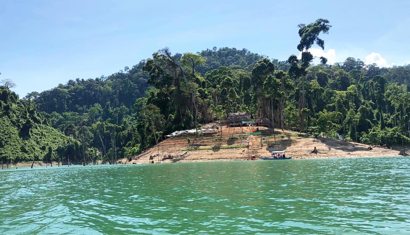 Trải nghiệm du lịch bảo vệ rừng ảnh 10