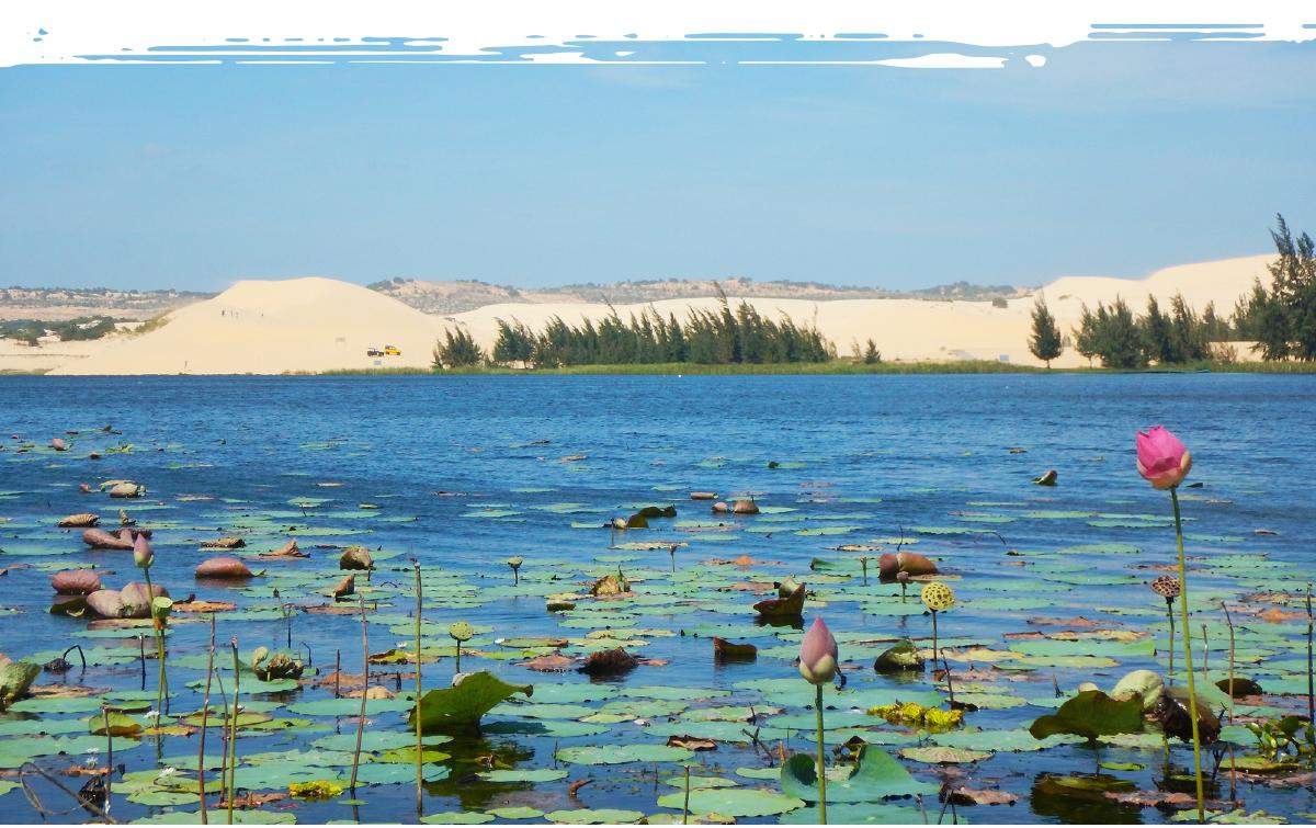 Mũi Né được công nhận là Khu du lịch quốc gia ảnh 6