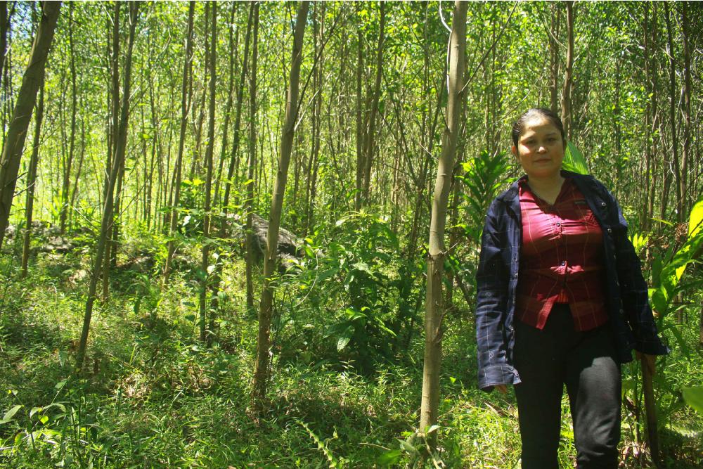 Điểm sáng ở làng Gò Tranh, Quảng Ngãi ảnh 11