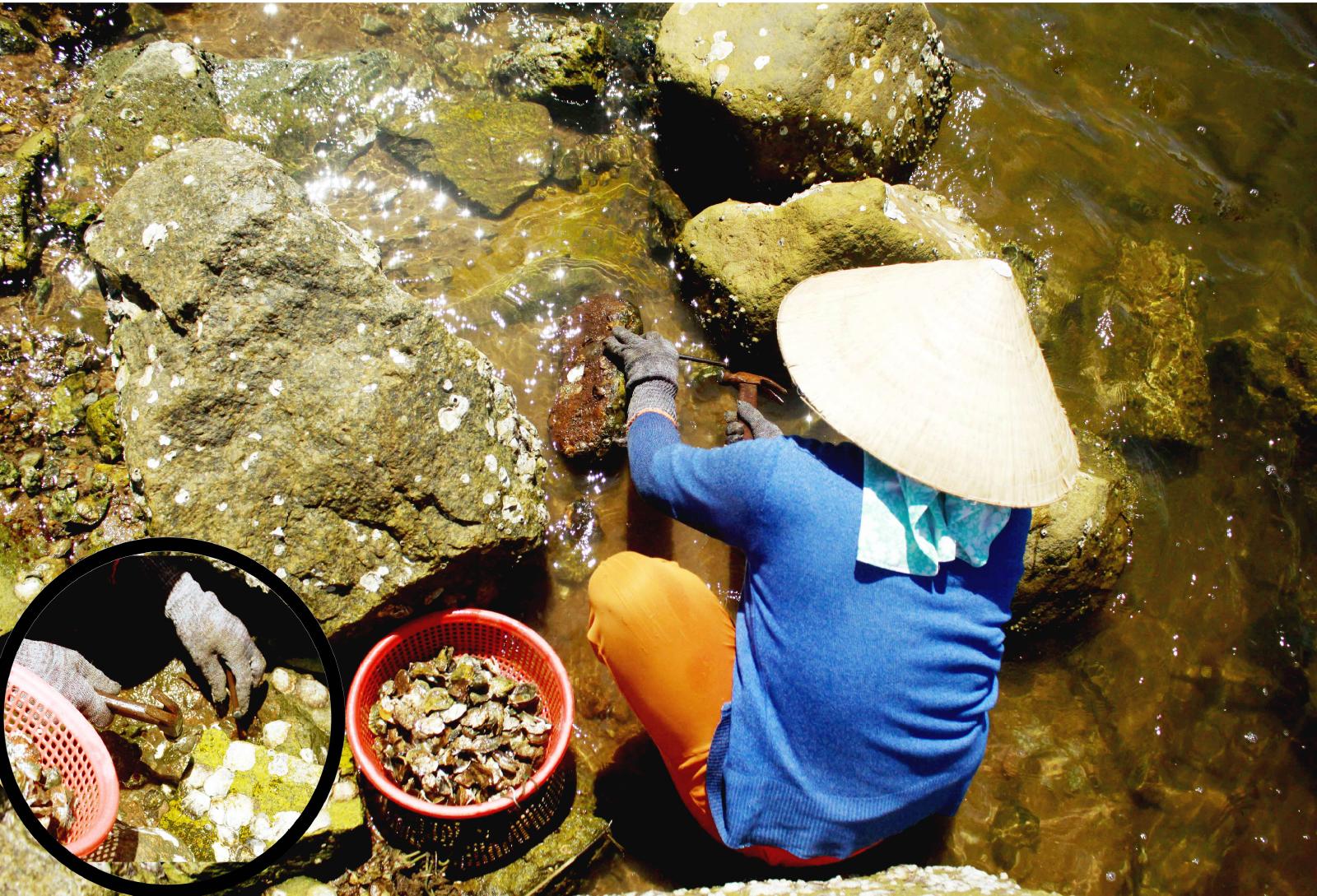 Nhọc nhằn nghề đẽo đá, đục hàu nơi cửa biển  ảnh 14
