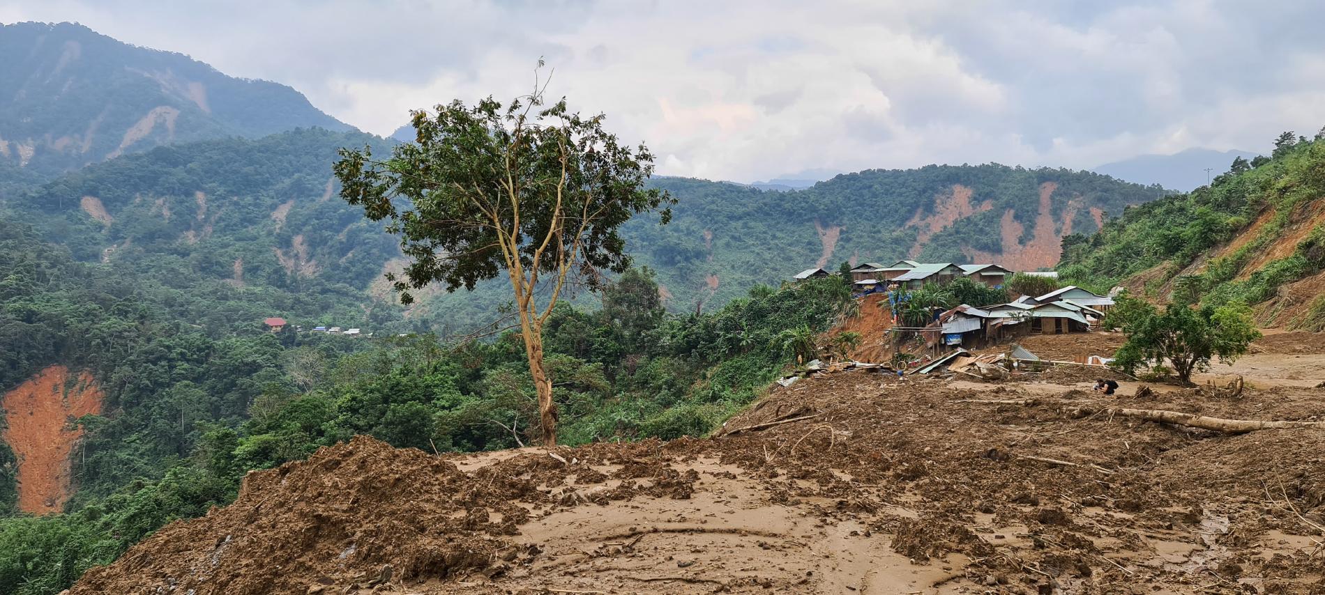 Phước Lộc tan hoang sau bão ảnh 20